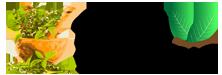Sidh-Ayurvedic-header